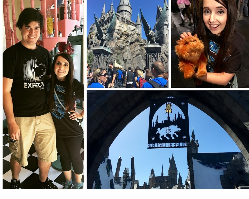 Wizarding World of Harry Potter(1)