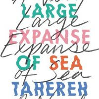 A Very Large Expanse of Sea by Tahereh Mafi | When the Teenage Feels Are Too Real
